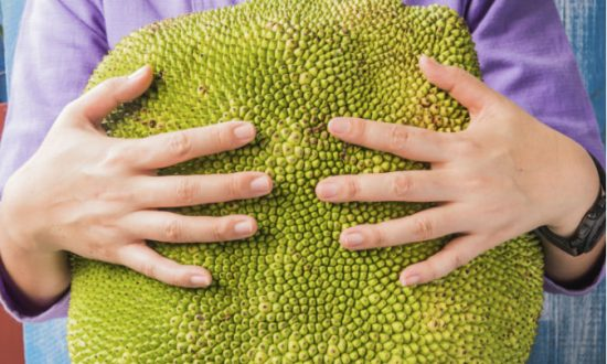 Jackfruit, the Delicious Meat Substitute
