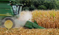 Sugar, Corn Industries Settle Sweetener Spat; Terms Secret