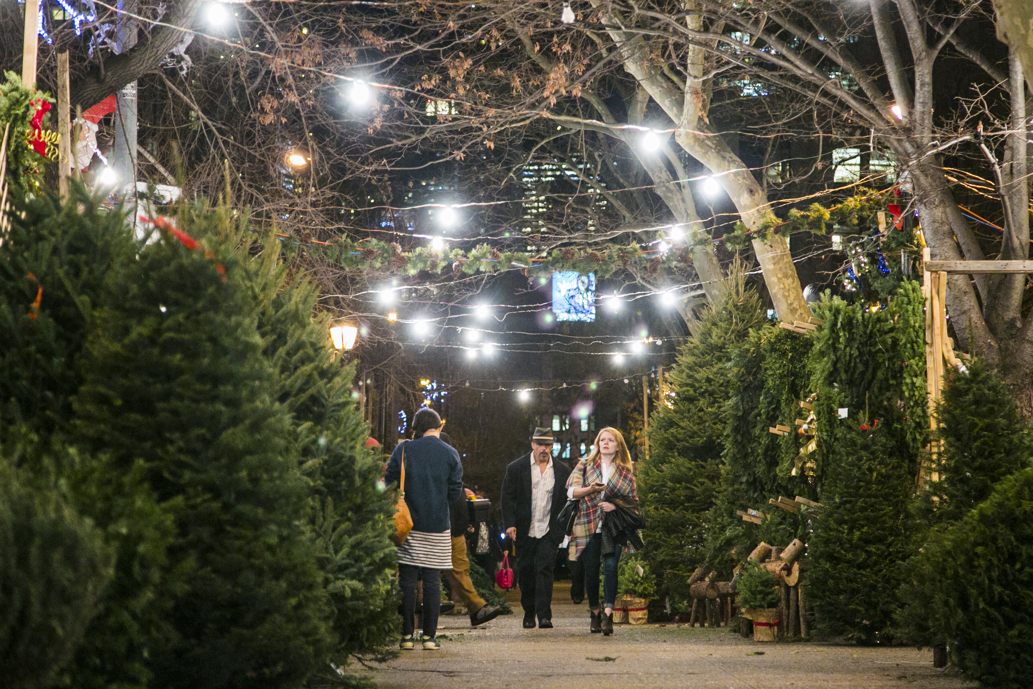 A Peek Behind The Curtain At New York S Christmas Tree Trade