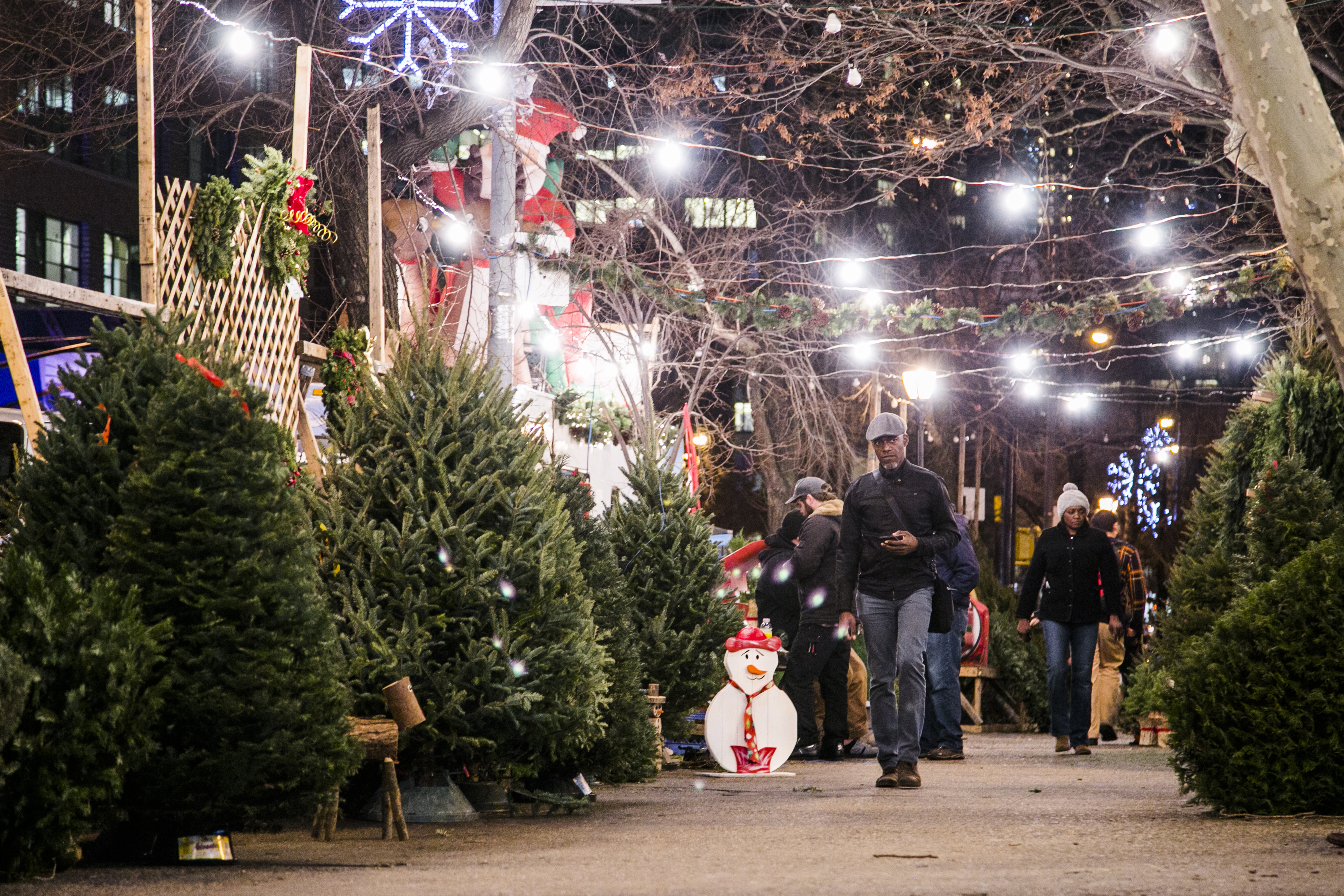 A Peek Behind the Curtain at New Yorks Christmas Tree Trade