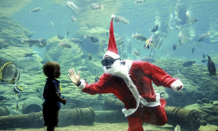 A South African diver dressed as Santa Claus greets a child during a show before Christmas at Africa's largest marine theme park, the South African Marine Biological Research (SAMBR) Sea World based at the uShaka Marine World in Durban on Dec. 22, 2015. (Rajesh Jantilal/AFP/Getty Images)