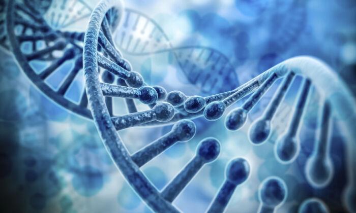 (Digitalgenetics/istock)