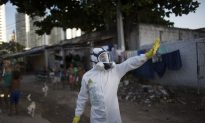 UN: Stopping Zika May Require Genetically Modified Insects