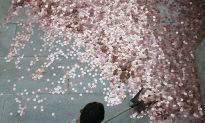 China's Top Securities Regulator Steps Down Amid Turmoil