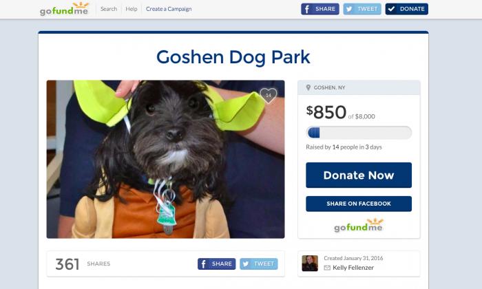 A screenshot on Feb. 3, 2016 of the GoFundMe page where Goshen high school student Kelly Fellenzer is raising money for a dog park in Goshen. (Screenshot GoFundMe)