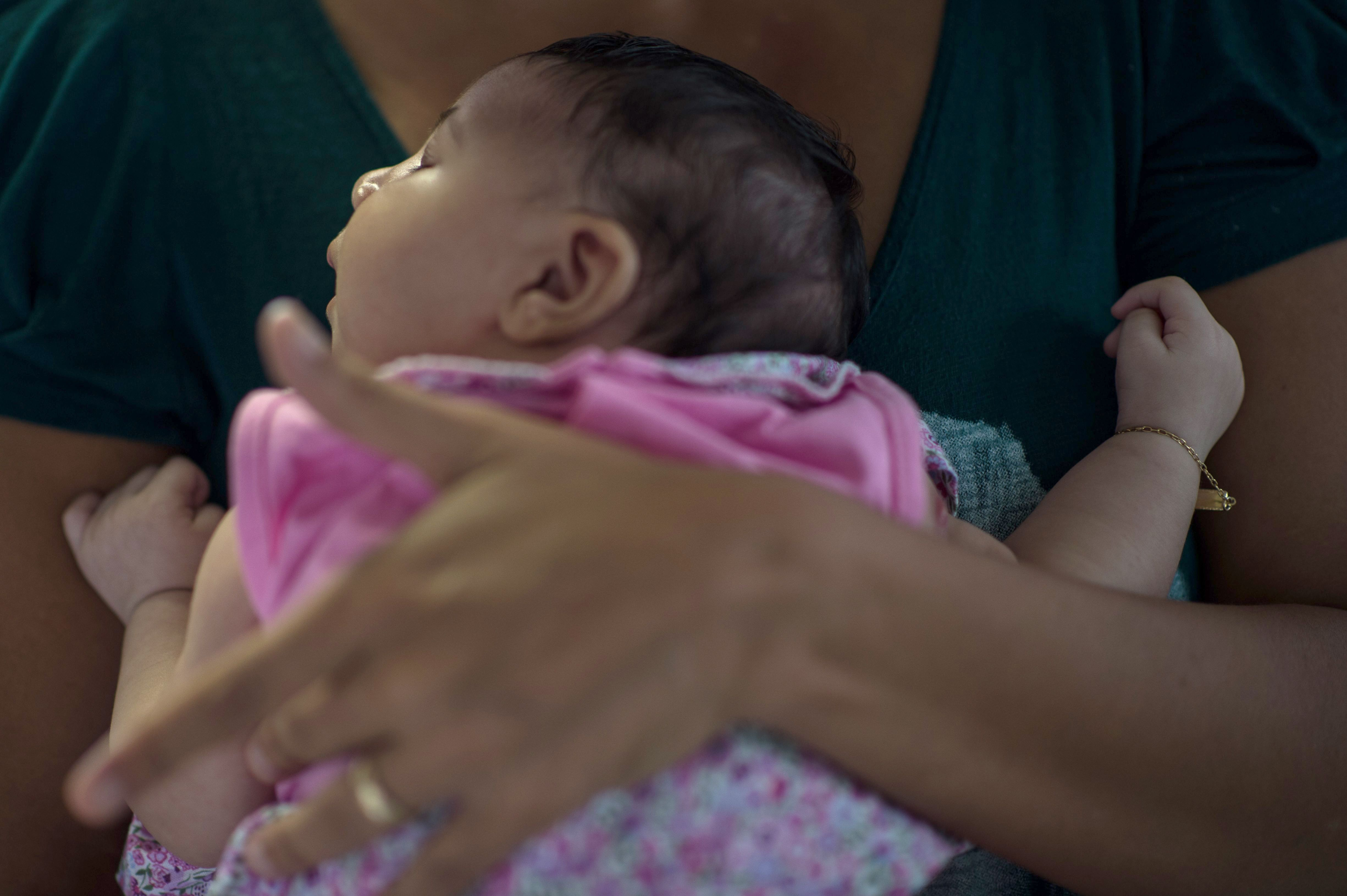 Is Microcephaly in Children Caused by the Zika Virus or by Pesticides?