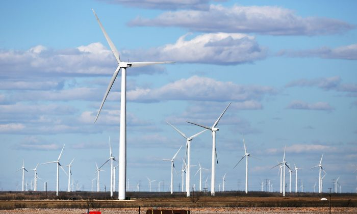 Wind turbines are viewed at a wind farm in Colorado City, Texas, on Jan. 21, 2016. Wind power accounted for 8.3% of the electricity generated in Texas during 2013. (Spencer Platt/Getty Images)