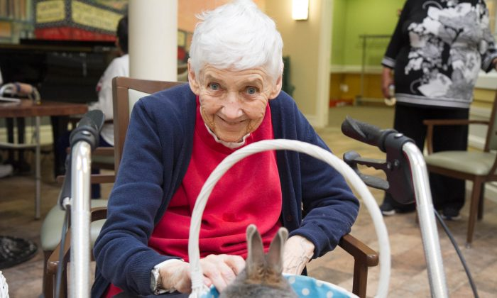 Eleanor pets a rabbit at the Promenade Assisted Living Facility in Middletown on Feb. 16, 2016. (Holly Kellum/Epoch Times)