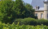 A Taste of Vincent Lataste Vineyards