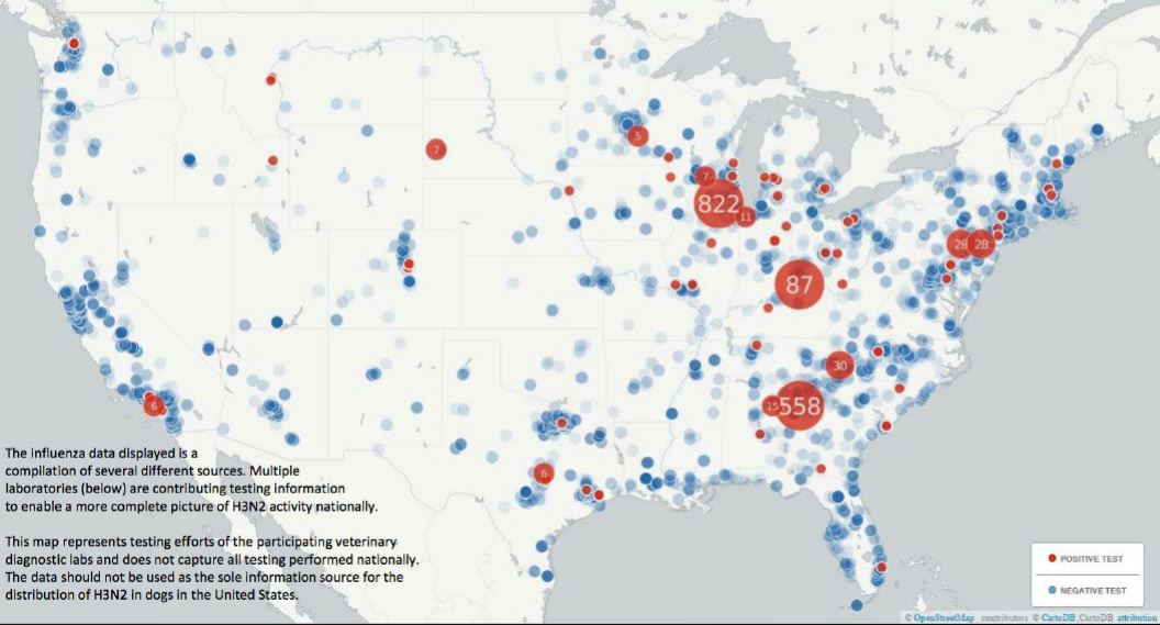 New Strain Of HN Dog Flu Spreads Across The US Reports Say - Map of us flu outbreak