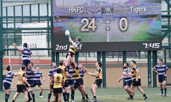 Borrelli Walsh USRC Tigers pressure the Natixis HKFC line to score 8 minutes into the second half in their Rugby Premiership match at Sports Road on Saturday Feb 13, 2016. (Bill Cox/Epoch Times)