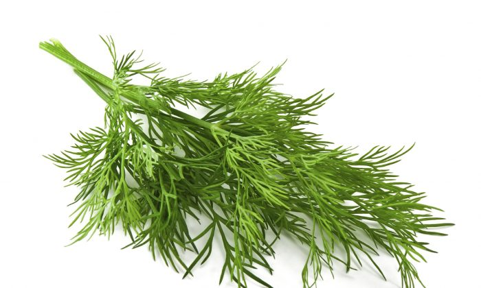 Dill soothes the stomach. (Preto_perola/iStock)