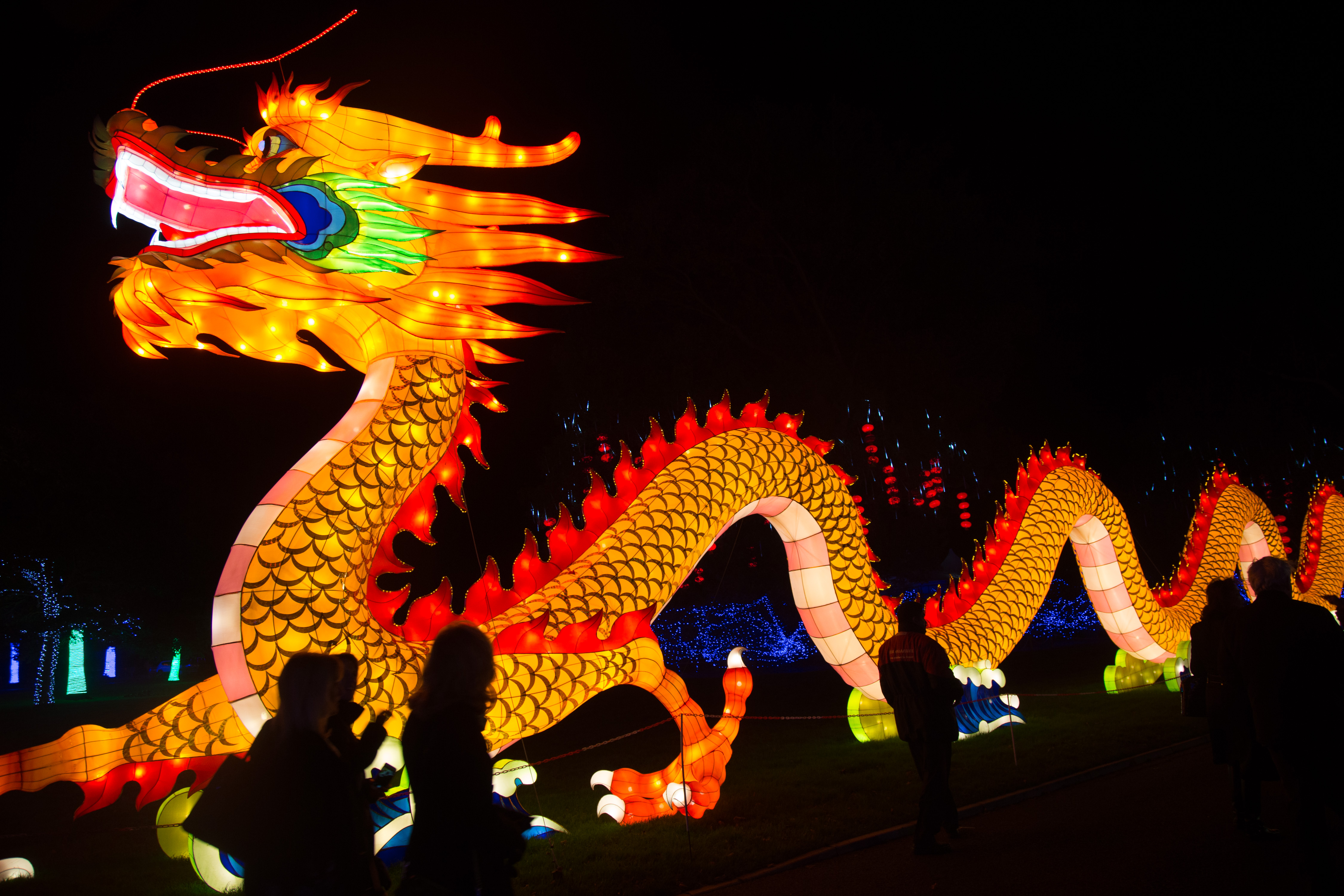 The dragons place in chinese civilization the epoch times an illuminated chinese dragon artwork displayed in the grounds at longleat on november 12 2015 buycottarizona Choice Image