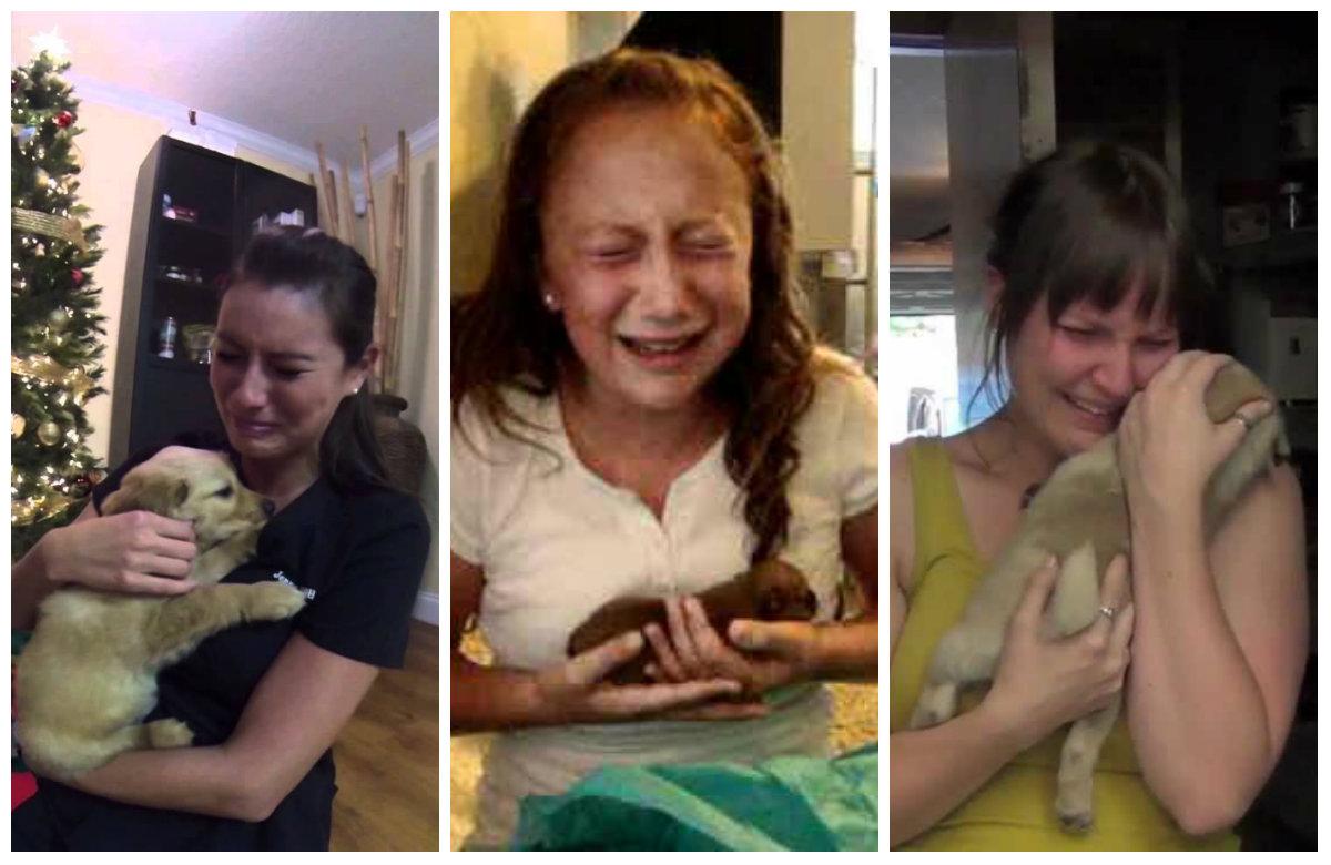 The Best Newborn Shoot Ever Stars Puppies