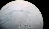 Saturn's Moons May Be Younger Than the Dinosaurs—so Could Life Really Exist There?