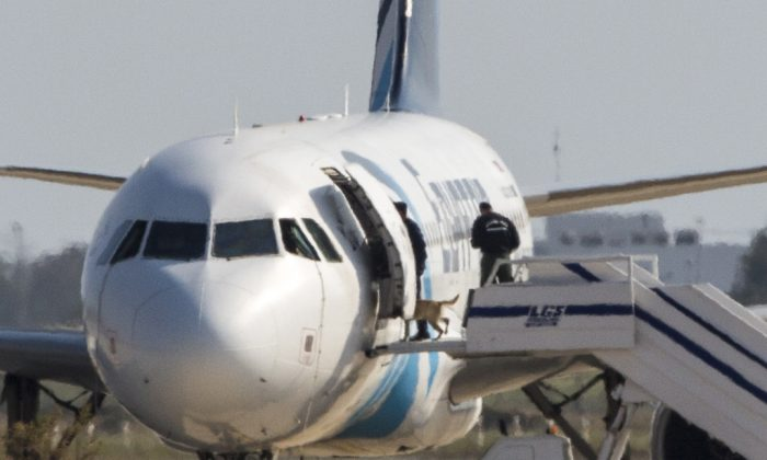 Cypriot security forces take a sniffer dog into an EgyptAir Airbus A-320 parked at the tarmac of Larnaca airport after the six-hour hijacking of the plane came to an end on March 29, 2016.  (Behrouz Mehri/AFP/Getty Images)