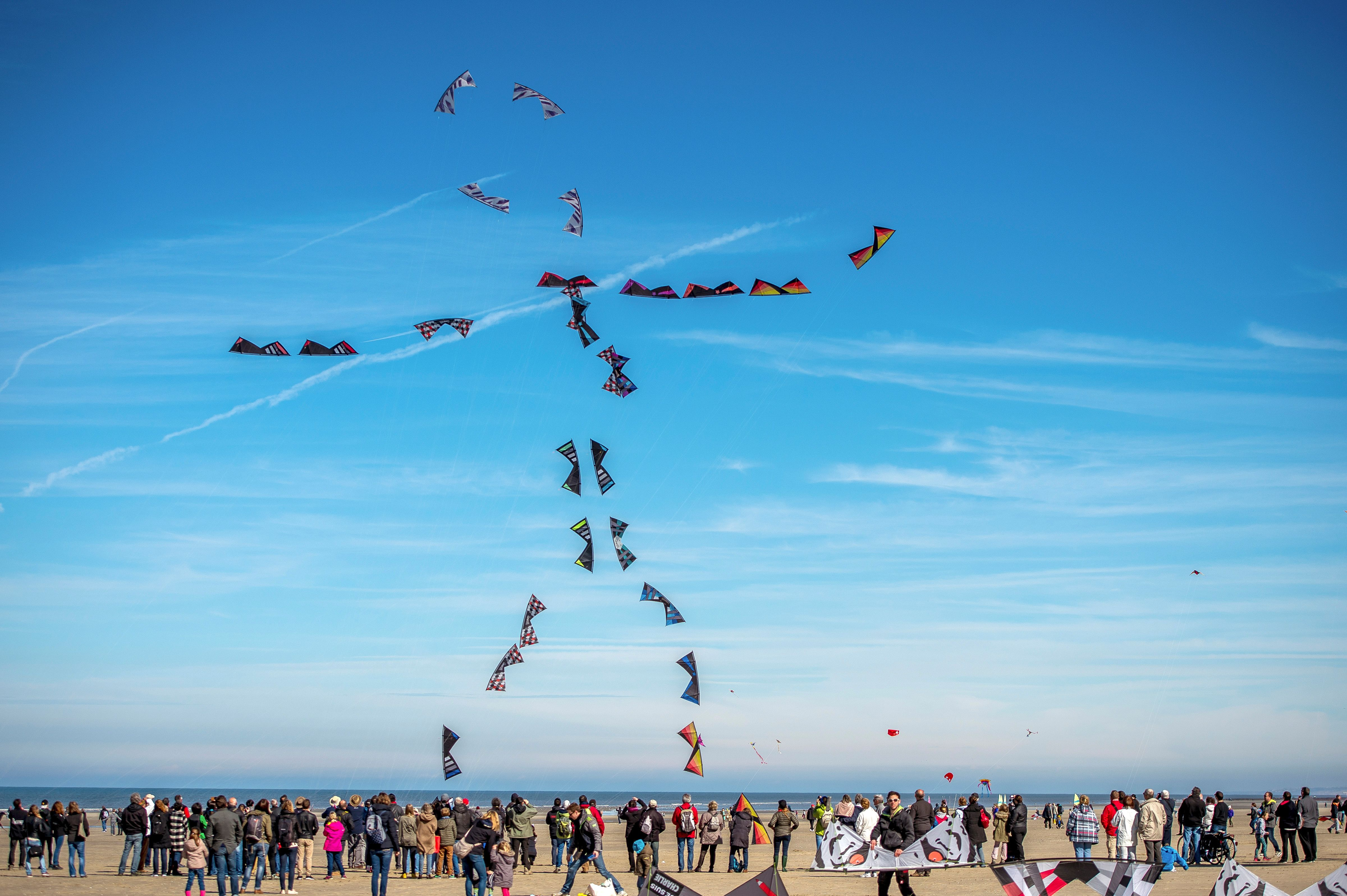 People fly kites during the 30th International Kite Festival in Berck-sur-Mer, northern France on April 12. (Philippe Huguen/AFP/Getty Images)