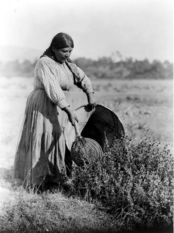 (Edward S. Curtis/Library of Congress)