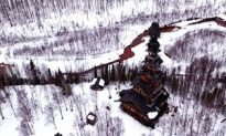 Why This Incredible Creation Should Not Be Called Dr. Seuss House?