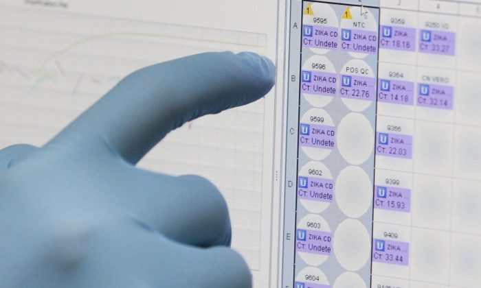 In this Thursday, Feb. 4, 2016, file photo, a medical researcher uses a monitor that shows the results of blood tests for various diseases, including Zika, at the Gorgas Memorial laboratory in Panama City. (AP Photo/Arnulfo Franco)