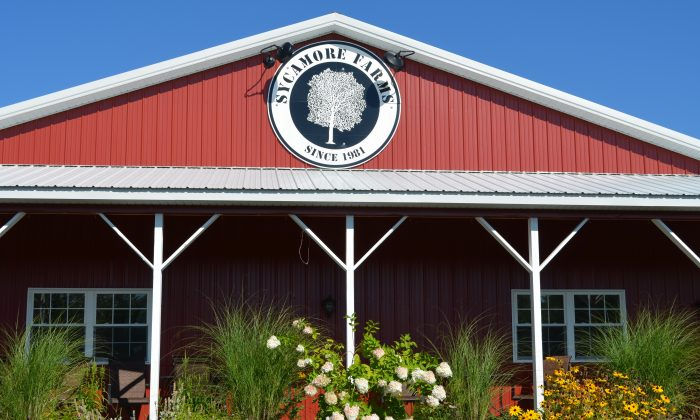 Sycamore Farm Stand in Wallkill on Sept. 29, 2015. (Yvonne Marcotte/Epoch Times)