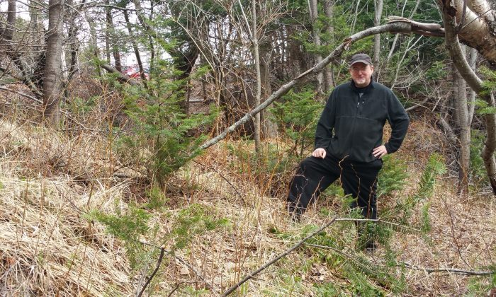 Wayne MacIsaac stands near what he believes may be the remnants of a Norse fortification wall. (Tara MacIsaac/Epoch Times)