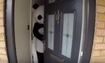 Guy Puts on a Panda Suit in Order to Sell His House in New Viral Video