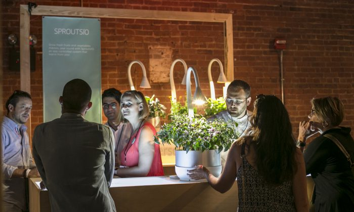 Exhibitor SproutsIO at the first inaugural Food Loves Tech innovation expo in New York on June 11, 2016. (Samira Bouaou/Epoch Times)