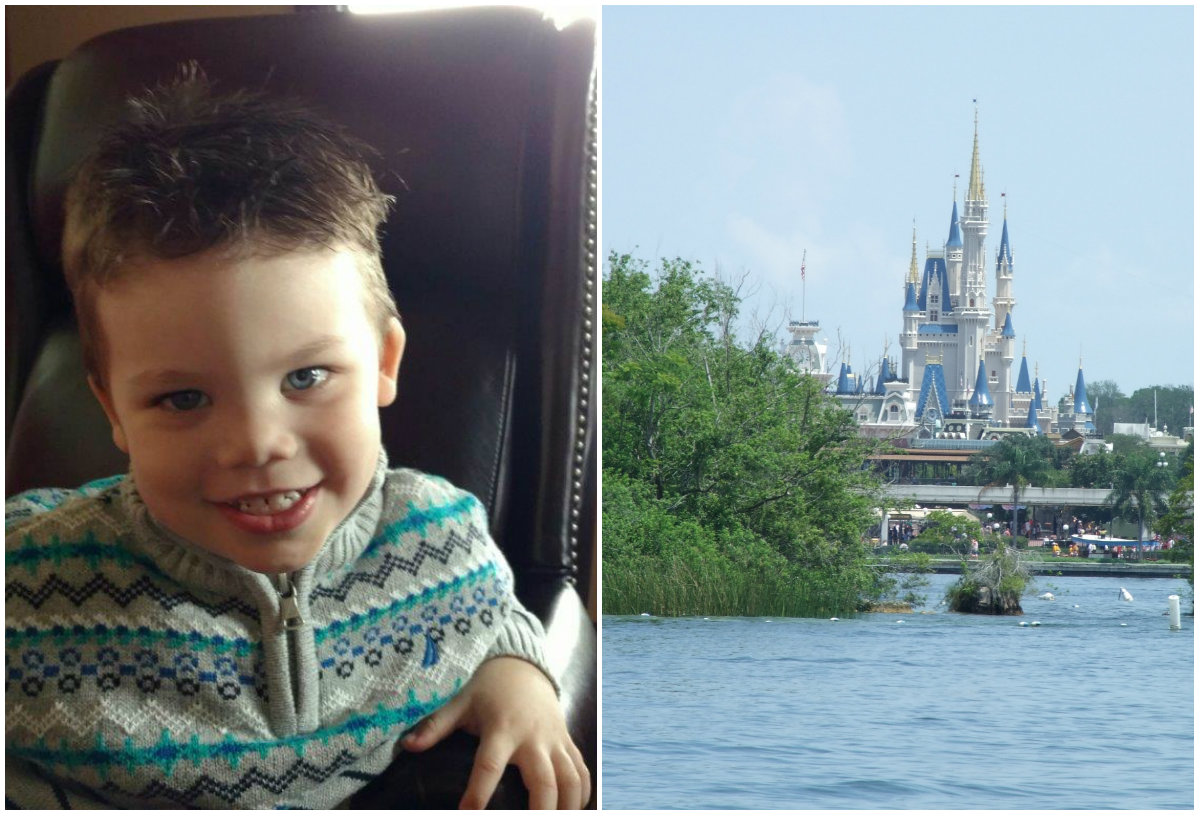 Could the Parents of Boy Killed by Alligator Sue Disney?
