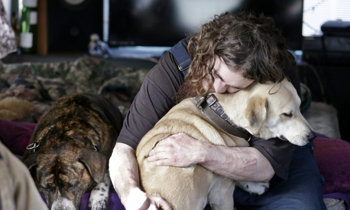 Joshua Madrid hugs his dog, Cheese, as Loki lies next to them in Madrid's bus, parked in a temporary city-approved area for people living in their vehicles in Seattle on Tuesday, Feb. 9, 2016. Seattle has the third-highest number of homeless people in the U.S. (AP Photo/Elaine Thompson)