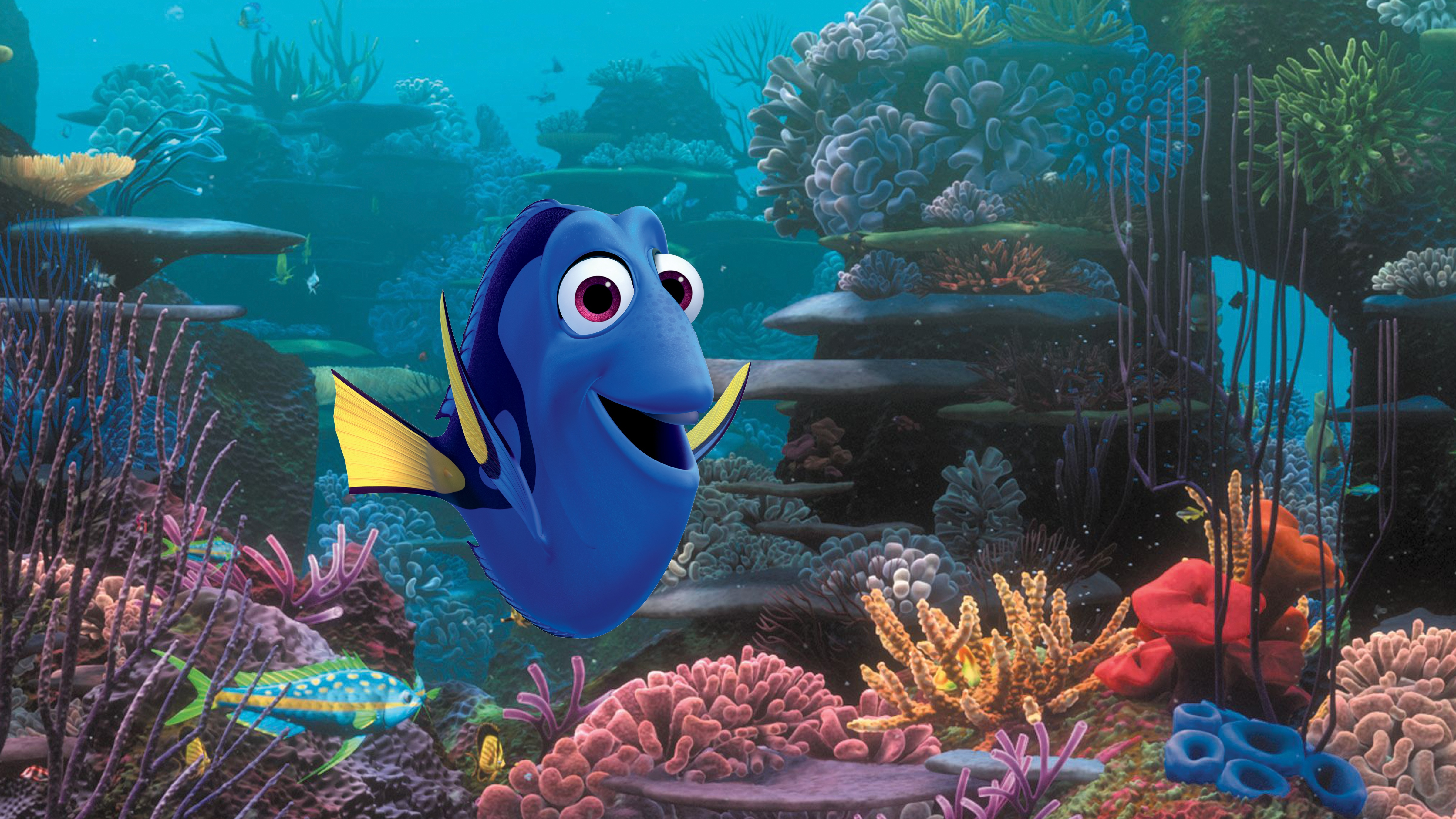 Finding Dory May Kill Her, Researchers Say—It Almost Killed Nemo