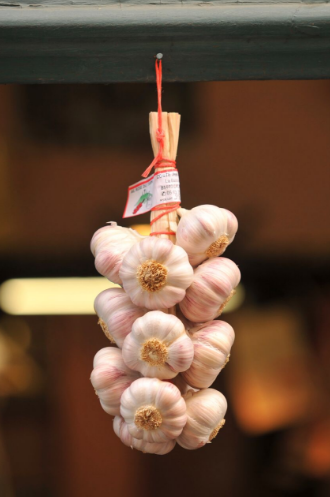 Pink garlic, grown since medieval times, will be celebrated Aug. 5 and 6 in the town of Lautrec, in the Tarn region of France. (Courtesy of Le Tarn Tourisme)