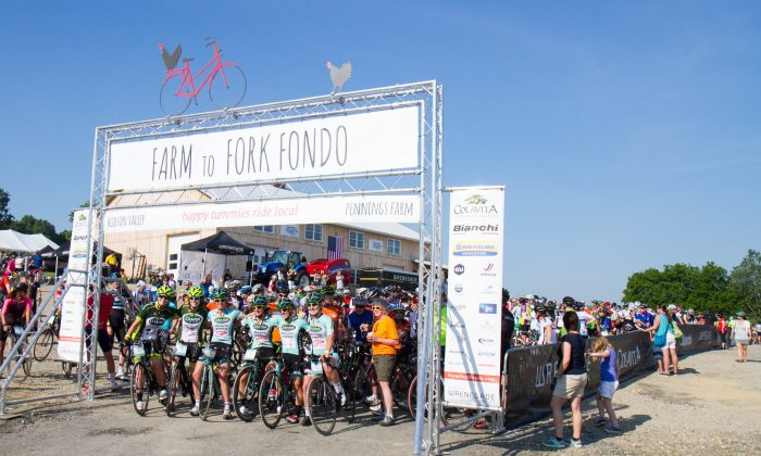 Cyclists at the starting line of the 2016 Hudson Valley Farm to Fork Fondo at Pennings Market Farm in Warwick on June 26, 2016. (Holly Kellum/Epoch Times)