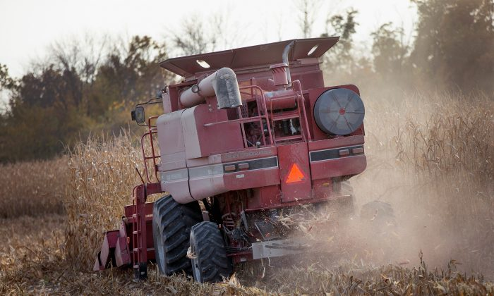 Farmers are among the group of jobs most likely to commit suicide, according to a new report by the CDC, June 30, 2016. (Scott Olson/Getty Images)