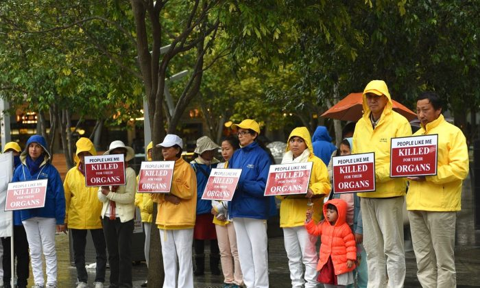 Falun Gong practitioners in Brisbane Square, on July 16, 2016. Practitioners are protesting against the communist regime's killing of potentially hundreds of thousands of Chinese citizens and pillaging their organs for profit. (Jern/NTD Television)