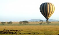 An Unforgettable Tanzanian Safari