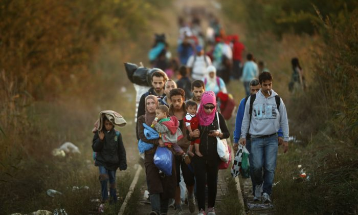 Migrants make their way through Serbia, near the town of Subotica, towards a break in the steel and razor fence erected on the border by the Hungarian government on Sept. 9, 2015. (Christopher Furlong/Getty Images)