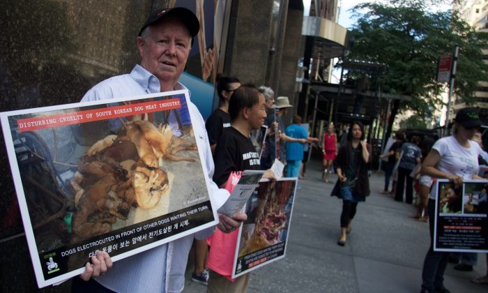 Protesters against South Korea's Boknal Dog Meat festival gather at the South Korean consulate in New York City, on July 27, 2016. (Shanga Juckas, Epoch Times)