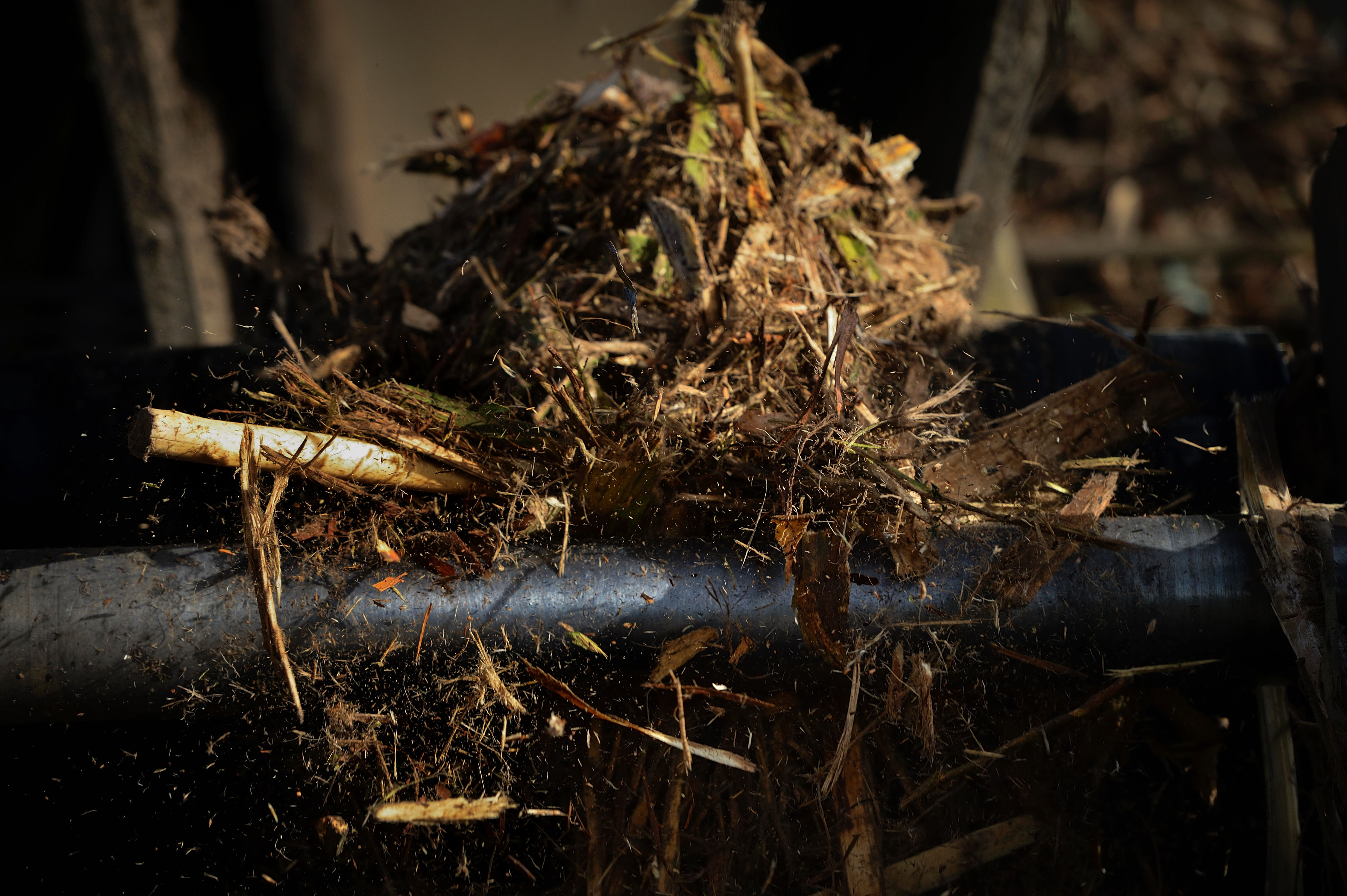 A file photo of bark and forest scraps at a biomass plant. (Miguel Riopa/AFP/Getty Images)