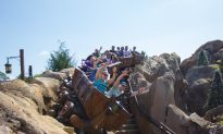 Roller Coasters Can Jostle out Kidney Stones