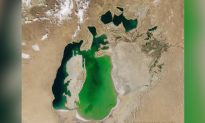 Shocking Satellite Images Show Aral Sea Has Almost Disappeared (Video)