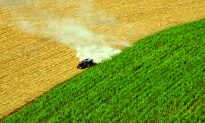 Will Growing Our Fuels Drive Us to a Cleaner Future?