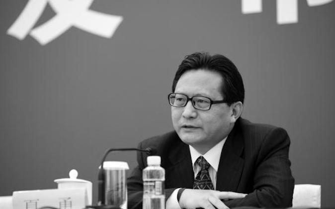 Former Legal Affairs Office deputy director Xia Yong. (Phoenix Television)