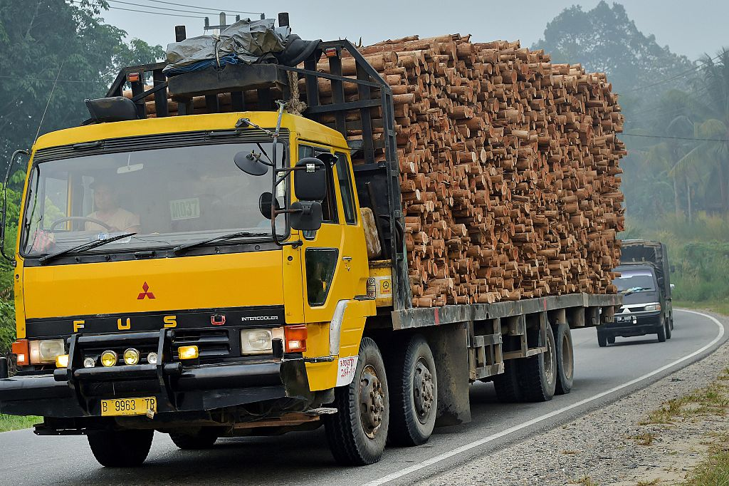 A truck carries acacia wood for pulp in Pelalawan, Riau Province, on Indonesia's Sumatra island, on Sept. 16, 2015. (Adek Berry/AFP/Getty Images)