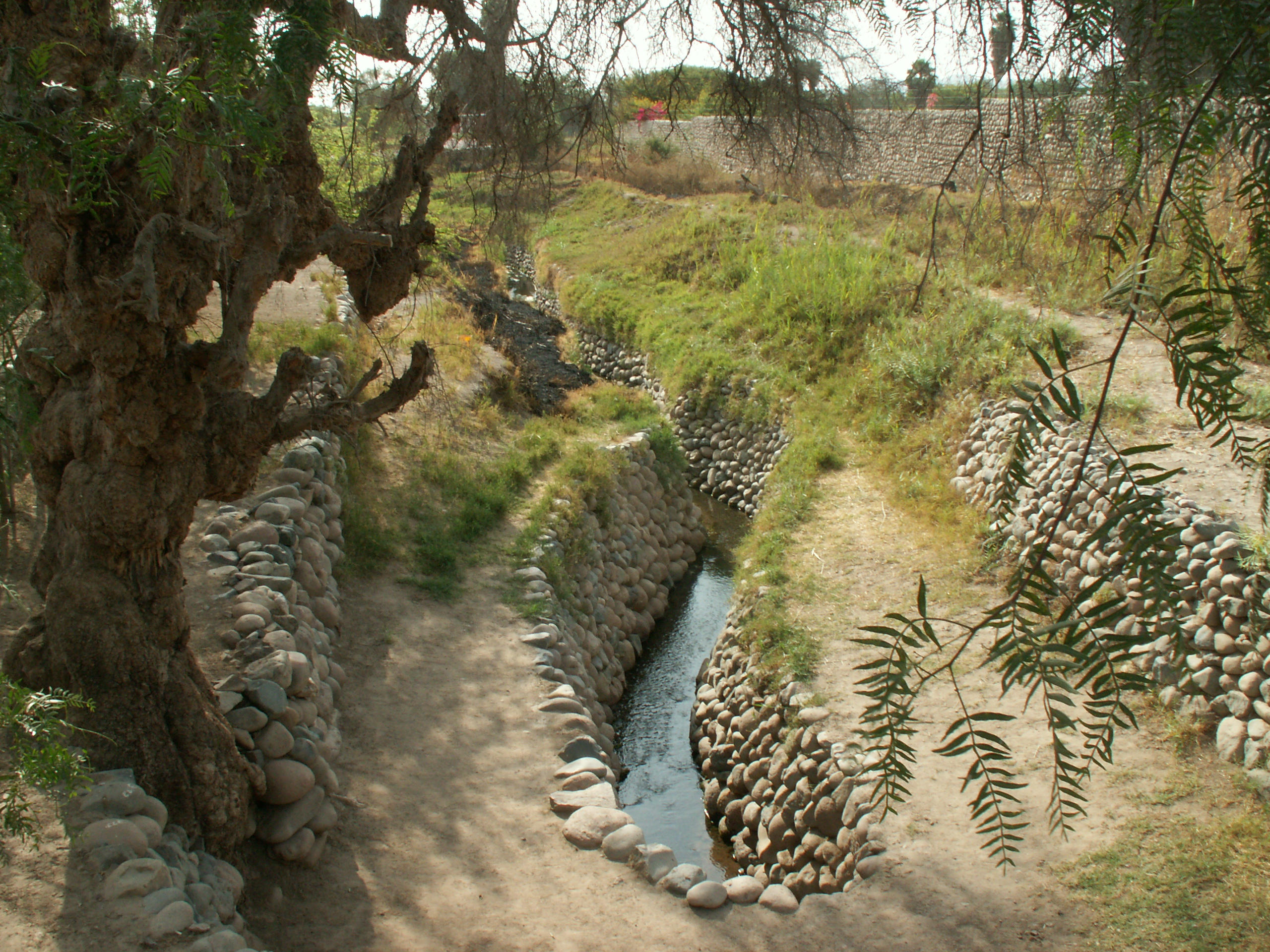 Nazca irrigation canals. ( CCBY)
