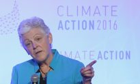 Judges Must Understand: Climate Rules Are Irrational