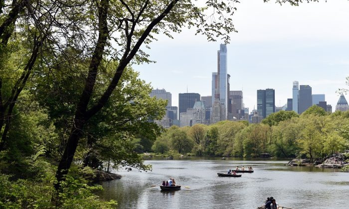 With a section of the Manhattan skyline in the background, people row around the lake in Central Park  May 12, 2014, in New York, taking advantage of the warm weather.  (TIMOTHY A. CLARY/AFP/Getty Images)