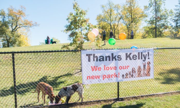 The dog park in Salesian Park in Goshen during the park's ribbon cutting on Oct. 10, 2016. (Holly Kellum/Epoch Times)