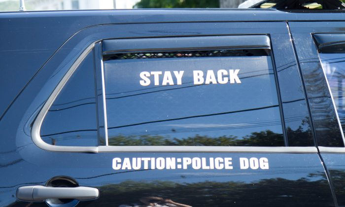 A Port Jervis police car with a K-9 in the back. (Holly Kellum/Epoch Times)