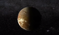 The Star Nearest to Our Sun May Host a Habitable Planet (Video)